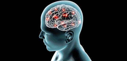 چگونه خاطرات در مغز ثبت می شوند؟
