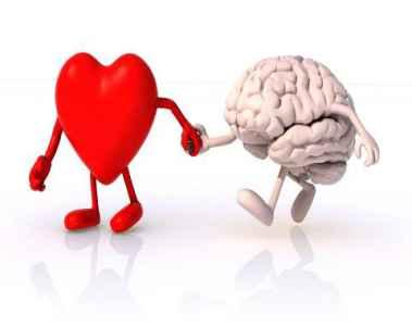 نحوه کارکرد و ارتباط مغز با قلب