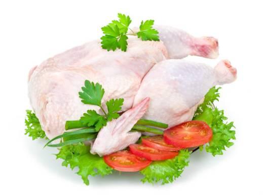 مشخصات مرغ سالم چیست؟